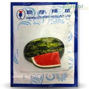 WL 001 WATER MELON