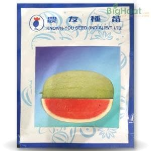 WL 005 WATER MELON