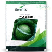 WONDER BALL CABBAGE - BigHaat.com