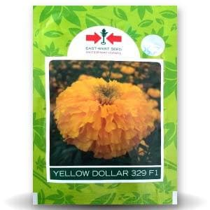 YELLOW DOLLAR MARIGOLD - BigHaat.com