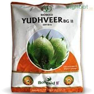 YUDHVEER BG-II COTTON - BigHaat.com