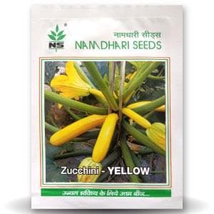 NS 9823 ZUCCHINI - LONG YELLOW - BigHaat.com