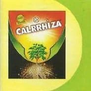 CALRRHIZA BIO FERTILIZER 1 KG - BigHaat.com