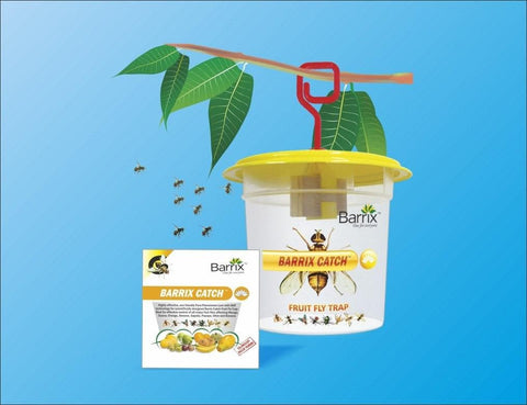 Crop Solutions - Barrix Catch Fruit Fly Trap