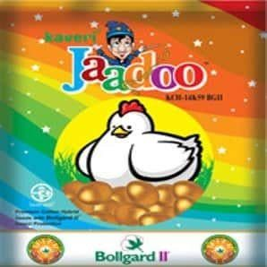 JAADOO COTTON - BigHaat.com