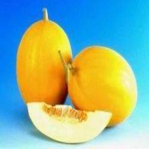 Fruit Seeds - KOHINOOR MUSK MELON