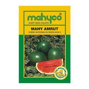Fruit Seeds - MAHY AMRUT