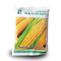 NS 8601 SWEET CORN