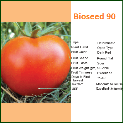 Vegetable Seeds - BIOSEED 90 TOMATO