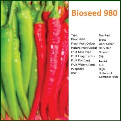 BIOSEED 980 CHILLI - BigHaat.com