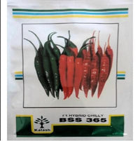 HYBRID CHILLI - BigHaat.com