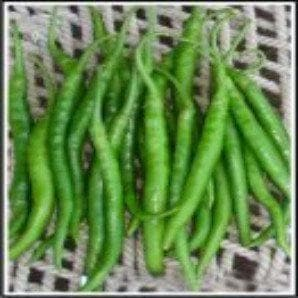 Vegetable Seeds - CHILLI