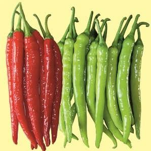 DAHAK CHILLI - BigHaat.com