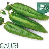 GAURI CHILLI - BigHaat.com