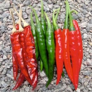 Vegetable Seeds - HOT KING CHILLI