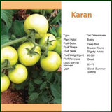 Vegetable Seeds - KARAN TOMATO