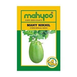 Vegetable Seeds - MAHY NIKHIL BRINJAL