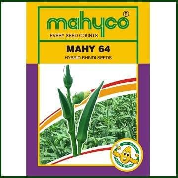 Vegetable Seeds - MAHY No. 64 BHENDI (OKRA)