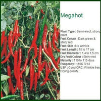 MEGA HOT CHILLI - BigHaat.com
