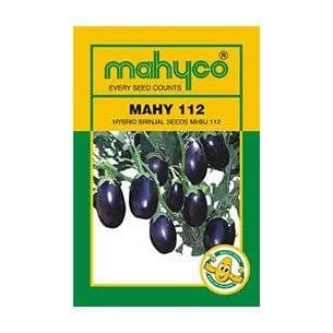 Vegetable Seeds - MHBJ-112 BRINJAL