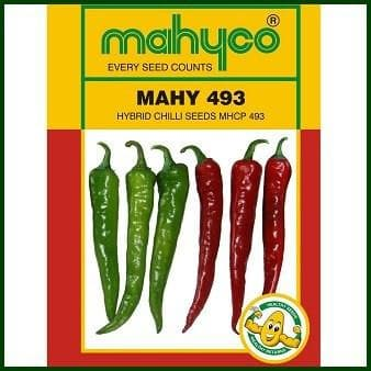 Vegetable Seeds - MHCP 493 (Chilli)