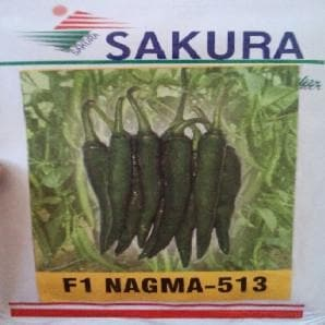 NAGMA F1 CHILLI - BigHaat.com