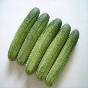 Vegetable Seeds - NS 408 CUCUMBER