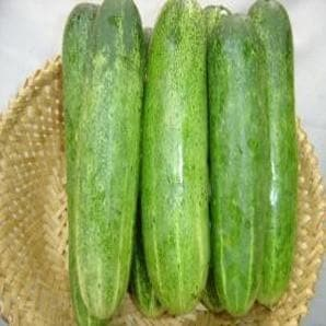 Vegetable Seeds - NS 415 CUCUMBER