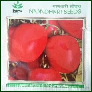 Vegetable Seeds - NS 629 TOMATO