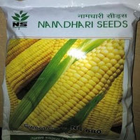 NS 680 SWEET CORN - BigHaat.com