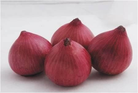 Vegetable Seeds - ONION