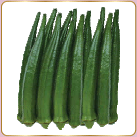 Vegetable Seeds - ROHINI BHENDI (OKRA)