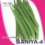 Vegetable Seeds - SANIYA 4 RIDGE GOURD