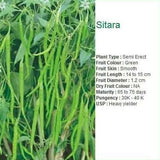 SITARA CHILLI - BigHaat.com