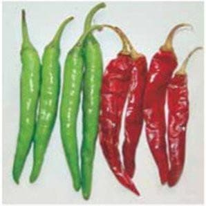 Vegetable Seeds - SUPER 35 CHILLI