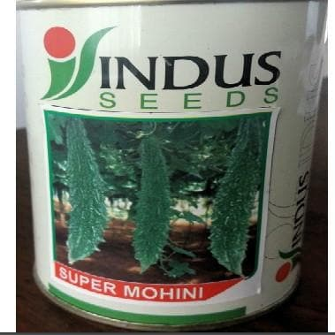 Vegetable Seeds - SUPER MOHINI BITTERGOURD