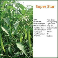 SUPER STAR CHILLI - BigHaat.com