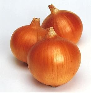 Vegetable Seeds - SUPEREX ONION F1