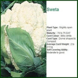 Vegetable Seeds - SWETA CAULIFLOWER