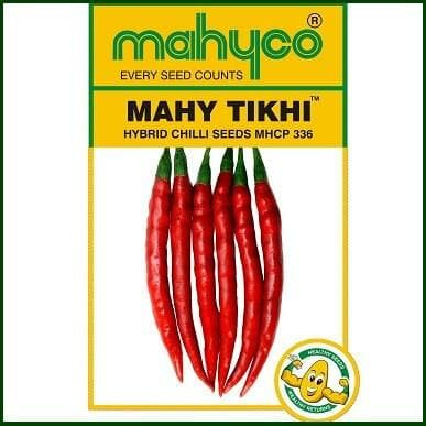 Vegetable Seeds - TIKHI MHCP 336 (chilli)