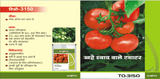 Vegetable Seeds - TO-3150 TOMATO