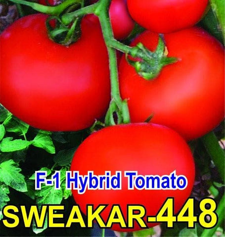 Vegetable Seeds - TOMATO