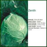 Vegetable Seeds - ZENNITH CABBAGE