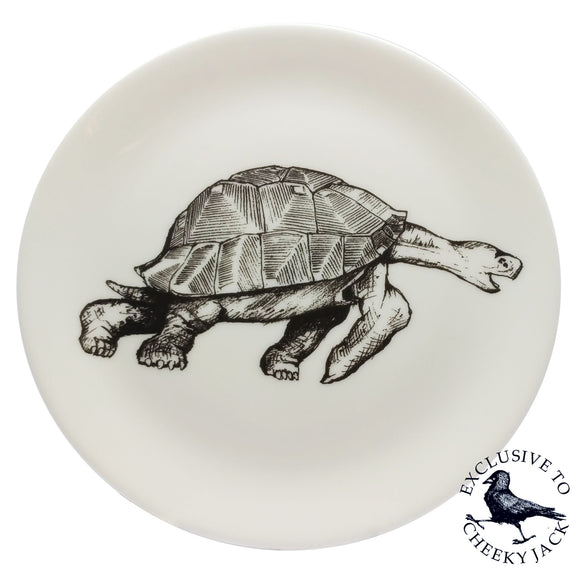 Cheeky Jack - Tortoise Plate - Chown of Cornwall - Fine Bone China - Cornwall - Designer - [Product_type], [Product_vendor]