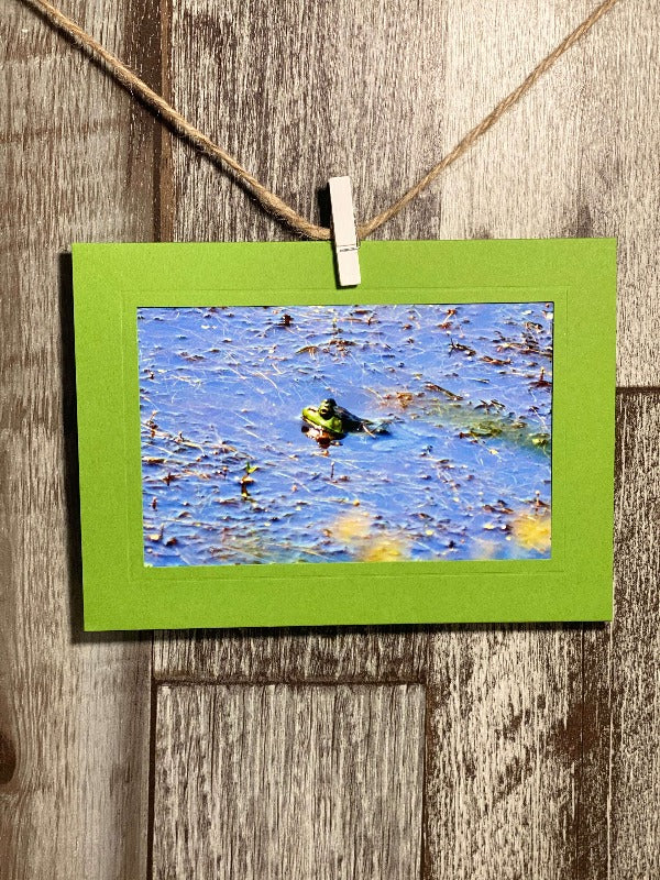 Frog at the Bog-Plymouth Cards