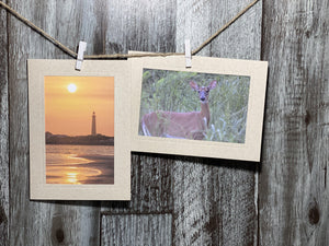 Wheat #CC705-Photo note cards-Plymouth Cards