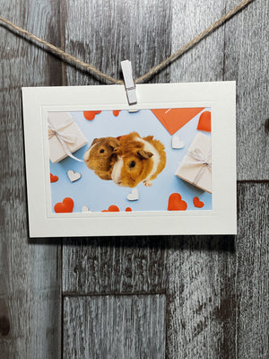 Valentine's Day-Plymouth Cards