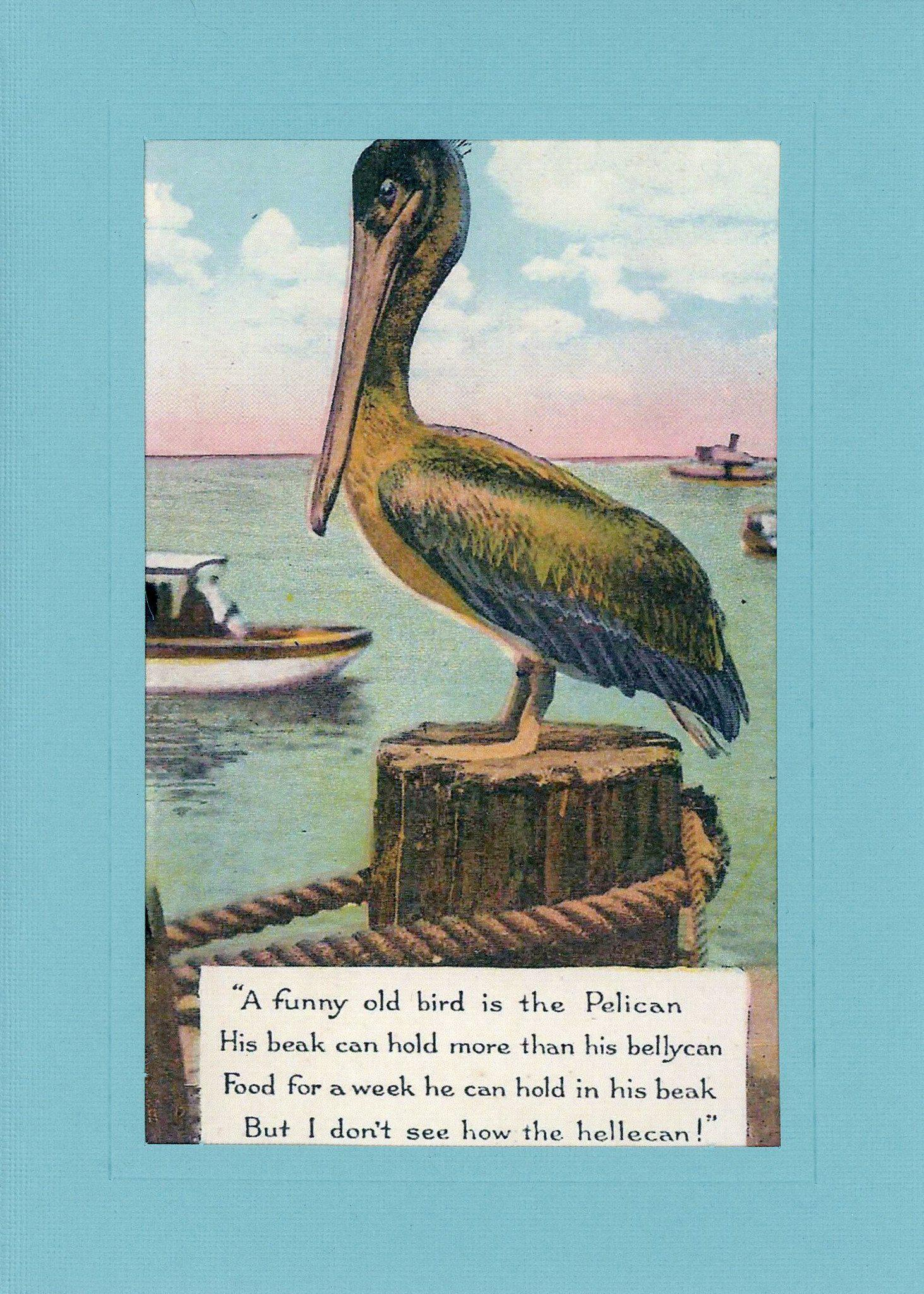Pelican Hellecan-Greetings from the Past-Plymouth Cards