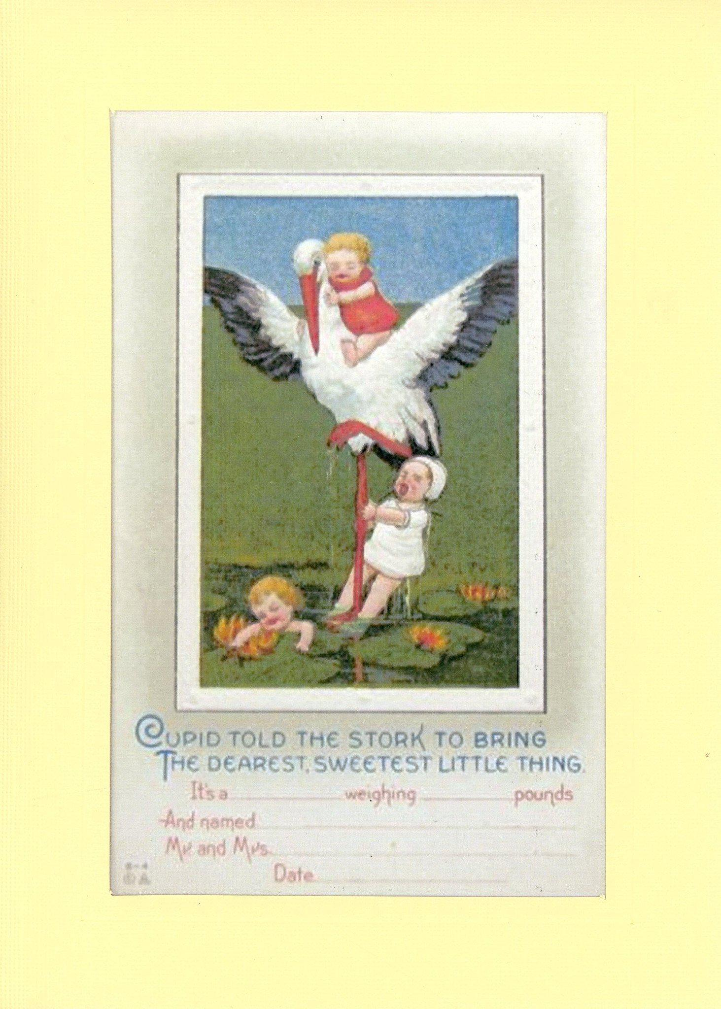 New Baby Announcement-Greetings from the Past-Plymouth Cards