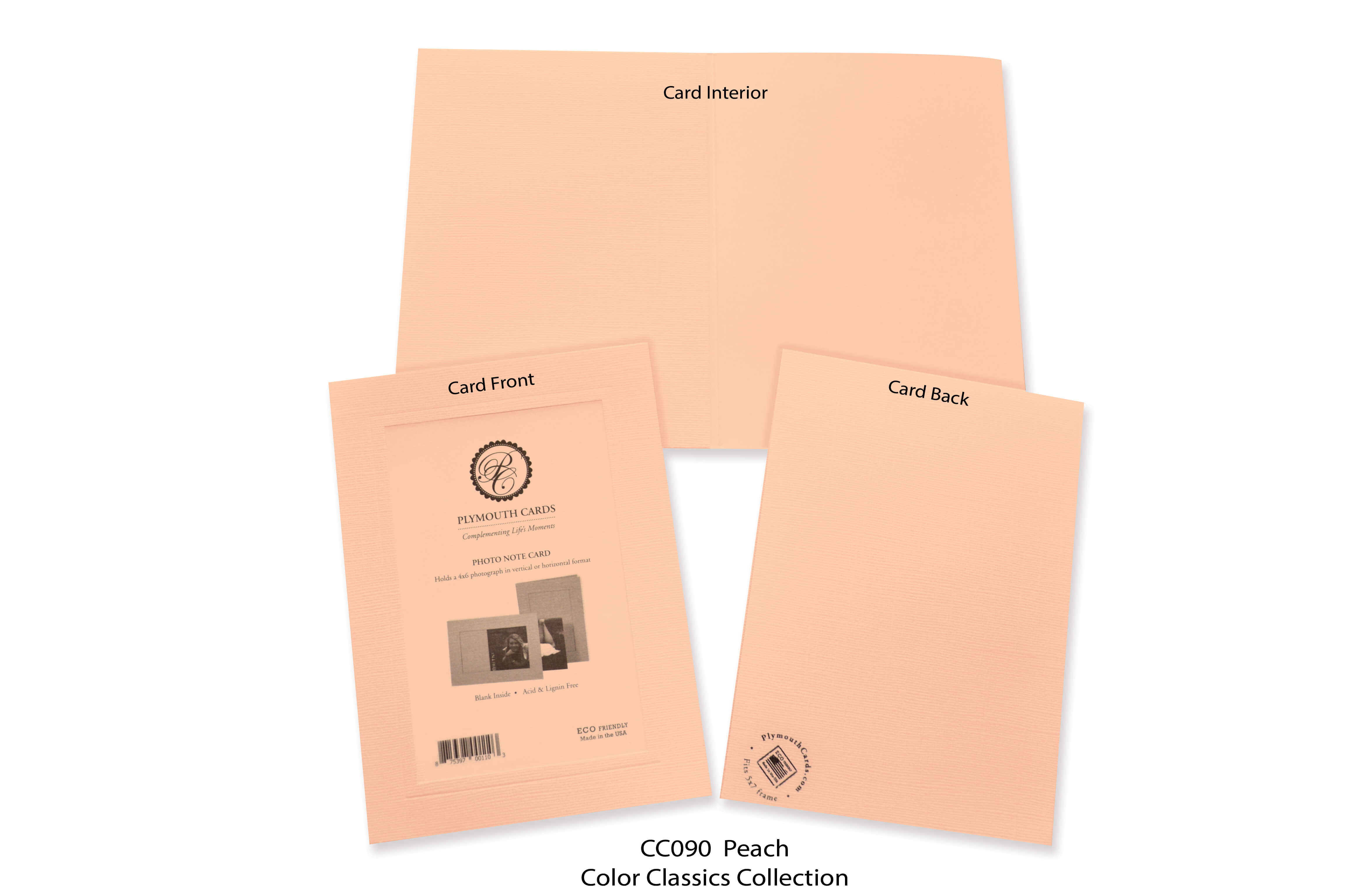 Peach #CC090-Photo note cards-Plymouth Cards